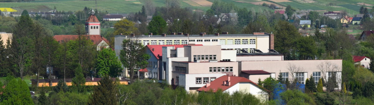Publiczna Szkoła Podstawowa Nr 1 w Dynowie